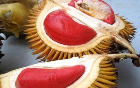 Sau rieng Malaysia gia tien trieu van hut khach hang Viet - Anh 9