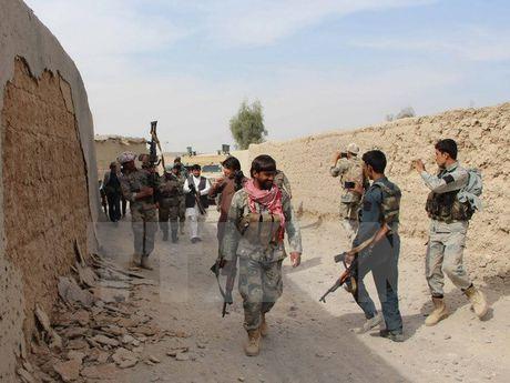 Taliban chua san sang dam phan hoa binh voi Chinh phu Afghanistan - Anh 1