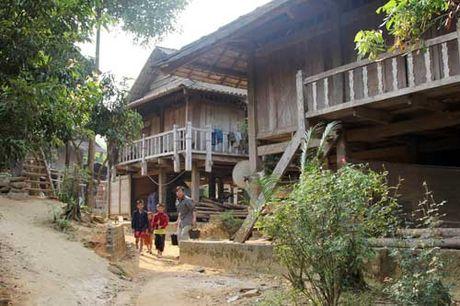 Nguoi Thai nang niu 'hon' nha san - Anh 1