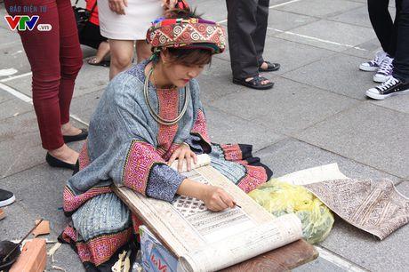 Thich thu ngam hoa tam giac mach Ha Giang giua long Ha Noi - Anh 13