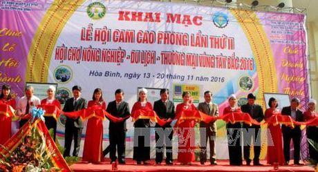 Khai mac le hoi cam Cao Phong lan thu 2 - Anh 1