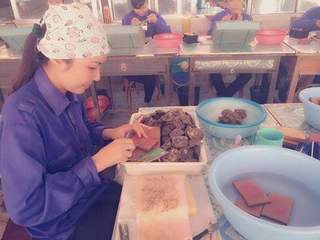 Doc dao nghe nuoi cay ngoc trai tren vinh Bai Tu Long - Anh 1