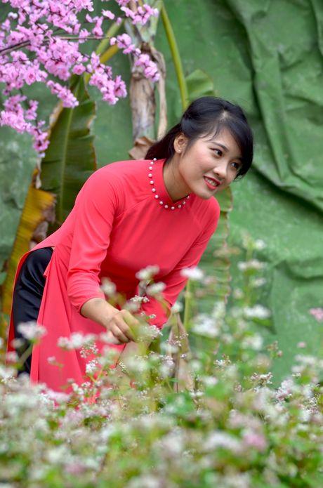 Tam giac mach Ha Giang 'xuong nui', khoe sac ben ho Guom - Anh 14