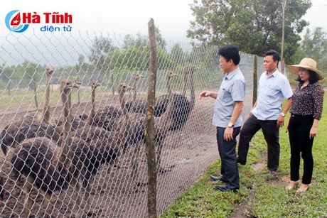 TX Ky Anh chi dao don suc dua Ky Hung ve dich NTM dung hen - Anh 1