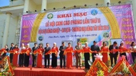 Tung bung Le hoi cam Cao Phong lan thu hai, nam 2016 - Anh 1