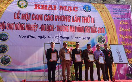 Le hoi cam Cao Phong ket noi tieu thu nong san chat luong - Anh 1