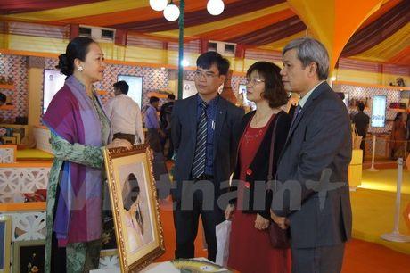 Viet Nam tham du Hoi cho Thuong mai quoc te lan thu 36 tai An Do - Anh 1