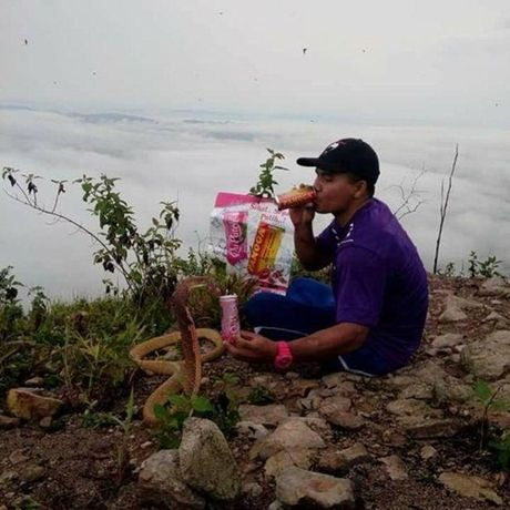 Song chung voi ran ho mang vi nghi la ban gai chuyen kiep - Anh 2