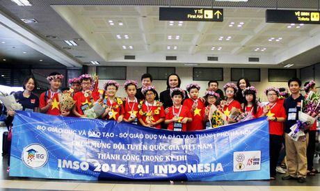 Viet Nam 'thang lon' tai Olympic Toan va Khoa hoc quoc te - Anh 1