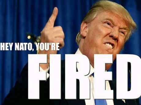 Trump len, NATO hot hoang keu goi My dung bo roi dong minh - Anh 1