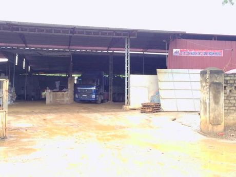 Trieu Son, Thanh Hoa: Hang loat nha xuong xay dung trai phep - Anh 2