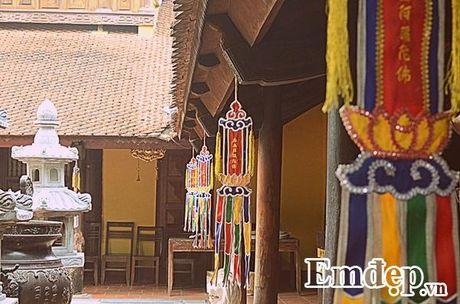 Ngay Ram ghe tham mot trong nhung ngoi chua dep nhat the gioi tai Viet Nam - Anh 5