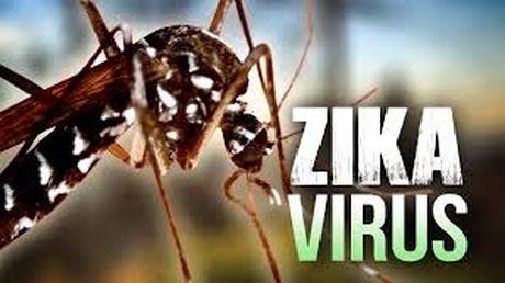 Virus Zika da lan ra tinh Ba Ria - Vung Tau - Anh 1
