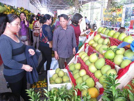 Le hoi Cam Cao Phong (Hoa Binh): Ngay khai hoi thu hon 600 tan - Anh 3