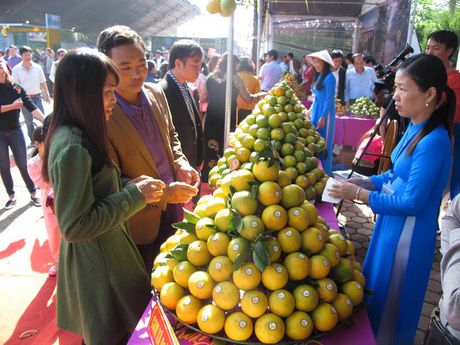 Le hoi Cam Cao Phong (Hoa Binh): Ngay khai hoi thu hon 600 tan - Anh 5