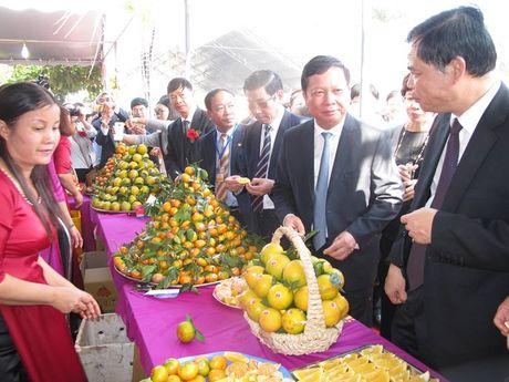 Le hoi Cam Cao Phong (Hoa Binh): Ngay khai hoi thu hon 600 tan - Anh 6