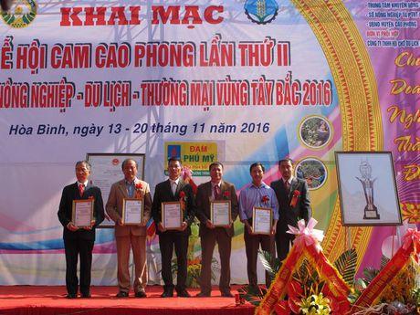 Le hoi Cam Cao Phong (Hoa Binh): Ngay khai hoi thu hon 600 tan - Anh 7