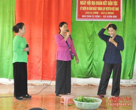 Pho Chu tich HDND tinh Hoang Viet Duong du ngay hoi dai doan ket tai Do Luong - Anh 3