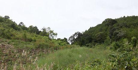 'Luat rung' tren dinh Truong Son - Anh 3