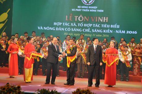Viet Nam: Top 15 quoc gia xuat khau nong san nhieu nhat the gioi - Anh 1