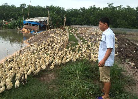 90% du an khoi nghiep that bai tu y tuong - Anh 1
