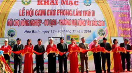 Tu hao thuong hieu cam Cao Phong, top 10 thuong hieu noi tieng lan thu 5 - Anh 1