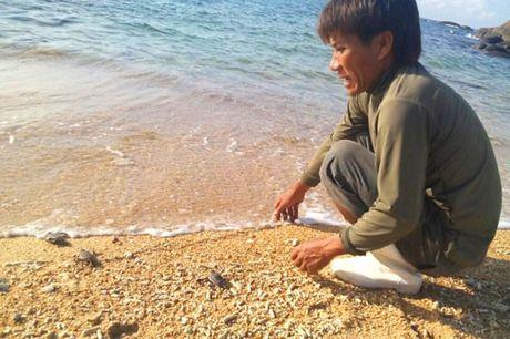 Vinh Tan 1 xin do thai ra bien: Can bao ton he sinh thai bien Hon Cau - Anh 3