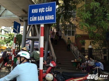 Hang rong, vat lieu bien cau di bo o Ha Noi thanh bai rac - Anh 1