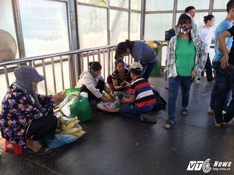Hang rong, vat lieu bien cau di bo o Ha Noi thanh bai rac - Anh 2