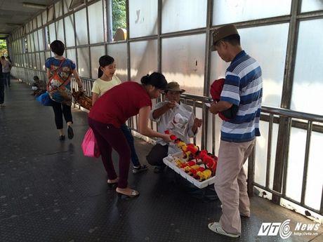 Hang rong, vat lieu bien cau di bo o Ha Noi thanh bai rac - Anh 4