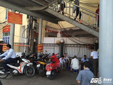 Hang rong, vat lieu bien cau di bo o Ha Noi thanh bai rac - Anh 7