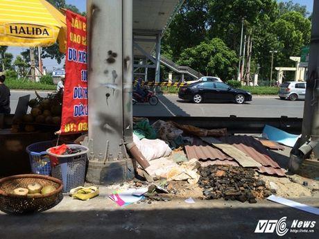 Hang rong, vat lieu bien cau di bo o Ha Noi thanh bai rac - Anh 8