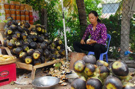 Vao mua duong thot not - bieu tuong cua vung Bay Nui - Anh 6