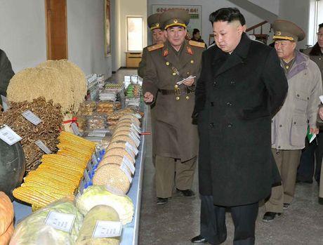 Kim Jong-un ra lenh cam treu dua ve beo phi, thua can - Anh 1