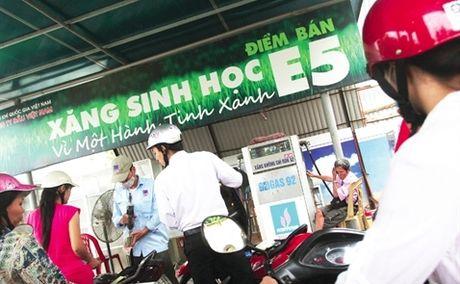 Xang sinh hoc dang duoi - Anh 1