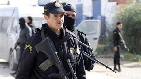 Tunisia phat hien 4 kho cat giau vu khi gan bien gioi Libya - Anh 1