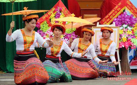 Truong ban Tuyen giao Tinh uy du Ngay hoi Dai doan ket tai Dien Chau - Anh 2