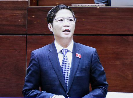 Dai bieu hoi ve du an 'dap chieu' va bauxite Tay Nguyen - Anh 1