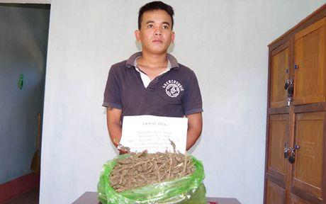 Sang Lao mua can sa ve ngam ruou uong - Anh 1