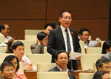 Toan canh Bo truong Cong Thuong Tran Tuan Anh tra loi chat van - Anh 10