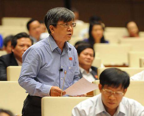 Toan canh Bo truong Cong Thuong Tran Tuan Anh tra loi chat van - Anh 12
