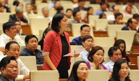 Toan canh Bo truong Cong Thuong Tran Tuan Anh tra loi chat van - Anh 13