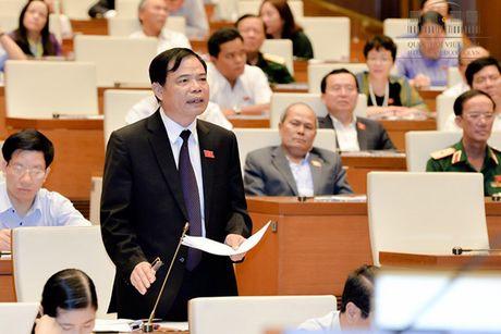 Toan canh Bo truong Cong Thuong Tran Tuan Anh tra loi chat van - Anh 14