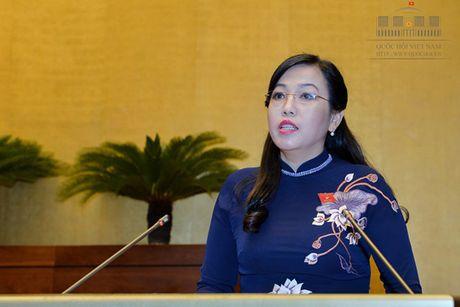 Toan canh Bo truong Cong Thuong Tran Tuan Anh tra loi chat van - Anh 16