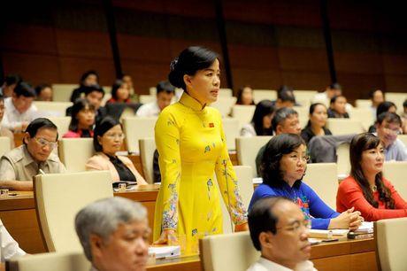 Toan canh Bo truong Cong Thuong Tran Tuan Anh tra loi chat van - Anh 5