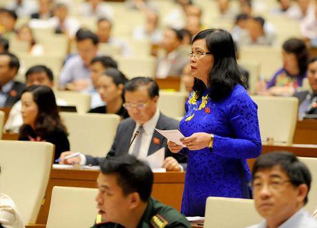 Toan canh Bo truong Cong Thuong Tran Tuan Anh tra loi chat van - Anh 7