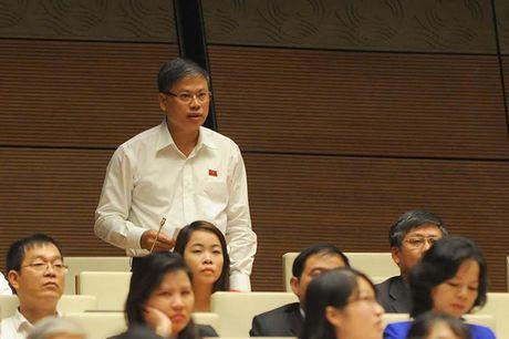 Toan canh Bo truong Cong Thuong Tran Tuan Anh tra loi chat van - Anh 8