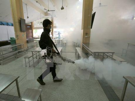 Thai Lan phat hien them 33 ca nhiem virus Zika trong tuan qua - Anh 1
