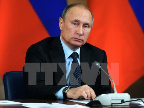 Da so nguoi Nga van muon ong Putin tiep tuc lam tong thong sau 2018 - Anh 1