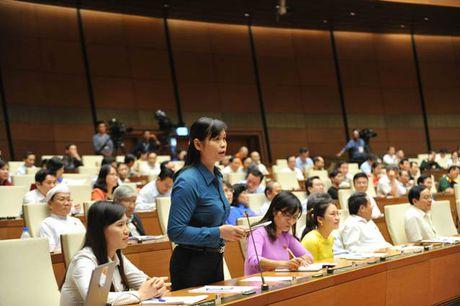 TOAN CANH: Bo truong Phung Xuan Nha tra loi chat van - Anh 2